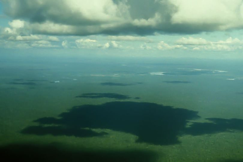 Tropical forests of West Kalimantan